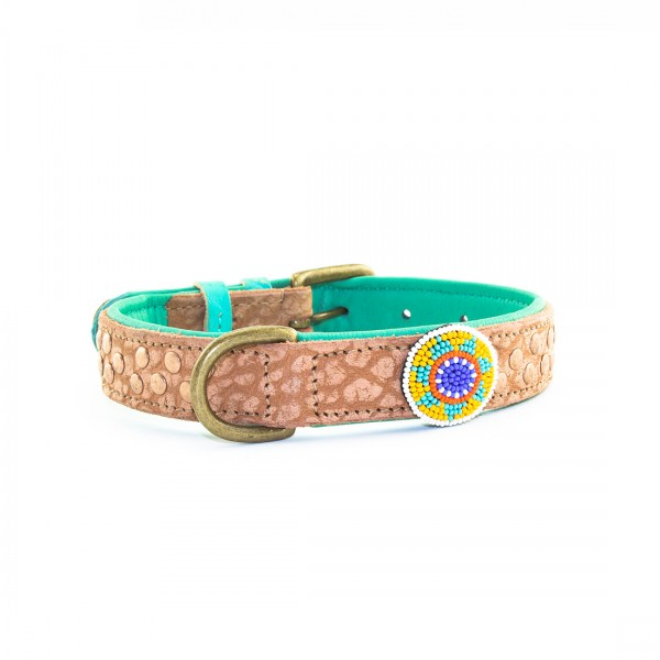 Hundehalsband PHOENIX Gr.S - 2,5 cm