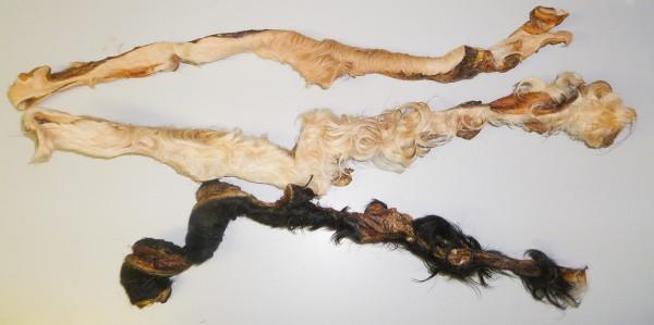 Rinderkopfhautstange mit Fell 60-70cm
